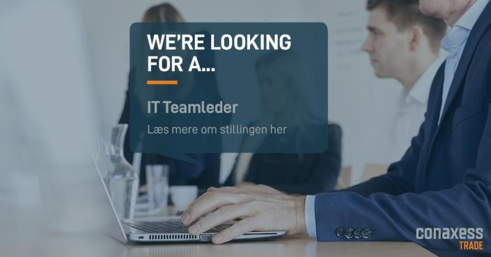 it teamleder